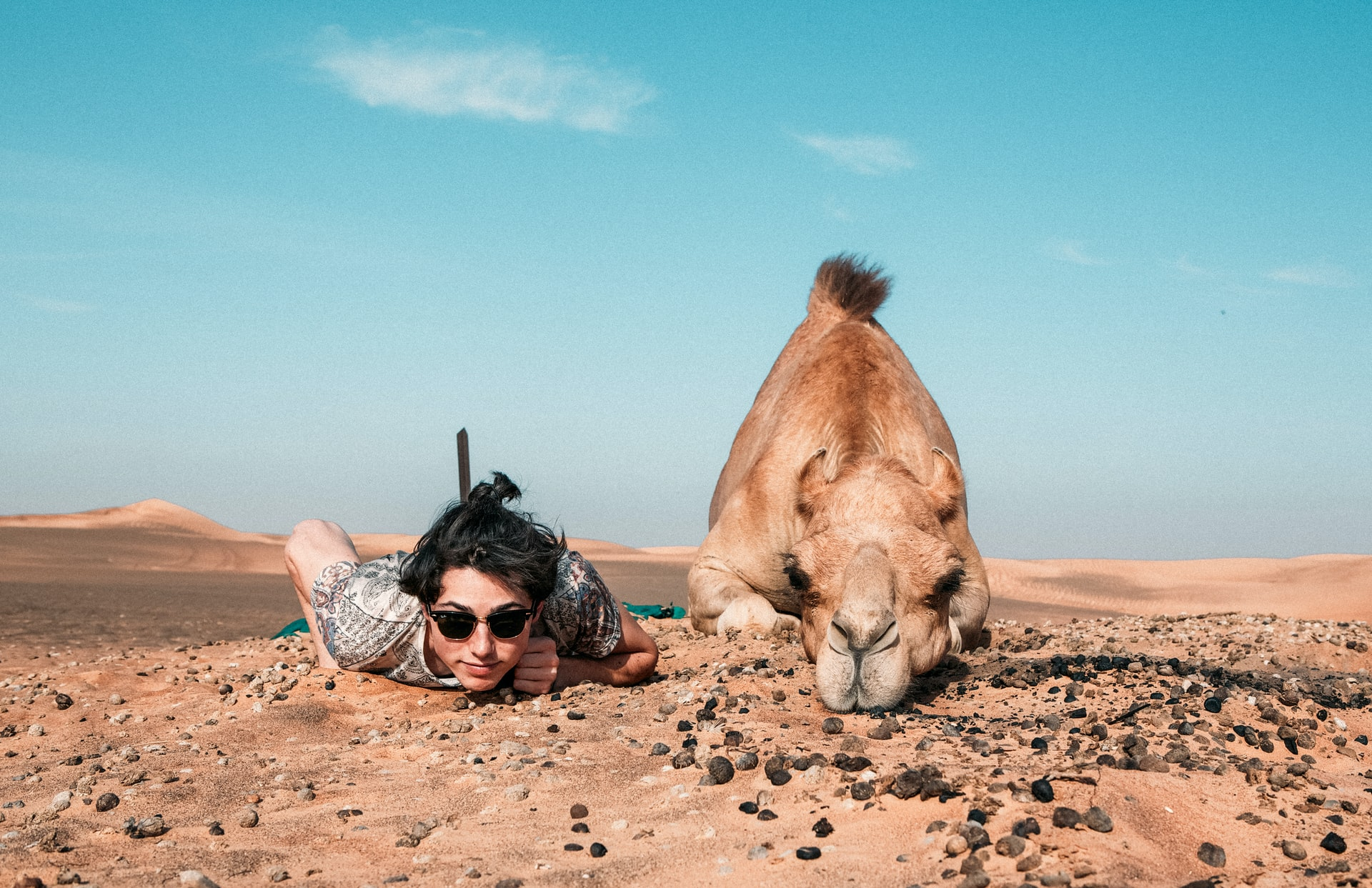 woman and camel